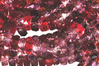 Vineyard 6x3mm Fire-polish Rondelle Mix x60