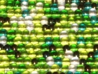 Evergreen 8/0 Czech Seed Bead Mix