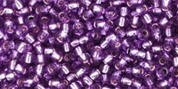 Grape Silver Lined 8/0 Toho Seed Bead 10g